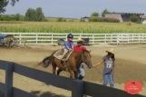 Horses & Hearts